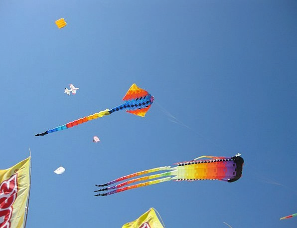 Kites Hovering Wind Breeze Flying Playing Live Asi