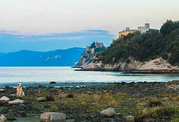 Duino Fortress Dog Canine Castle Palace Golf