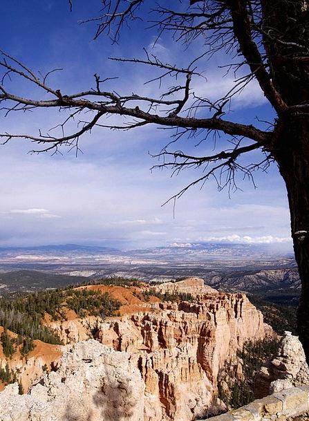 Bryce Canyon Landscapes Nature Usa Utah Rocks Pill