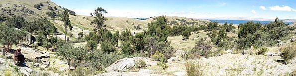 Bolivia Landscapes Nature Copacabana Lake Titicaca