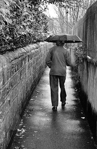 Old Ancient Gentleman Rain Volley Man Path Black D