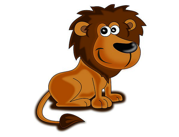 Lion Physical Wild Rough Animal Happy Content Wild