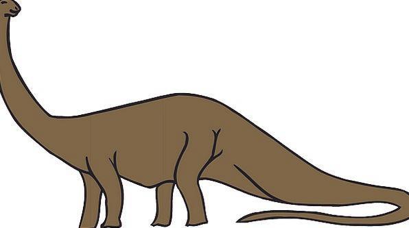 Dinosaur Relic Landscapes Antique Nature Prehistor