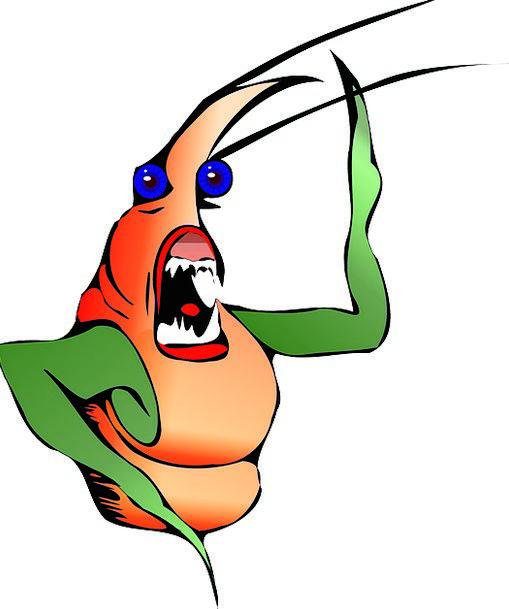 Lobster Vacation Travel Seafood Ocean Meal Crustac