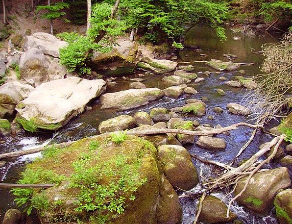 Water Aquatic Landscapes Gravels Nature Rock Pilla