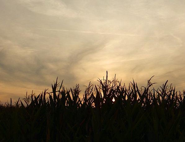Sunset Sundown Vacation Arena Travel Clouds Vapors