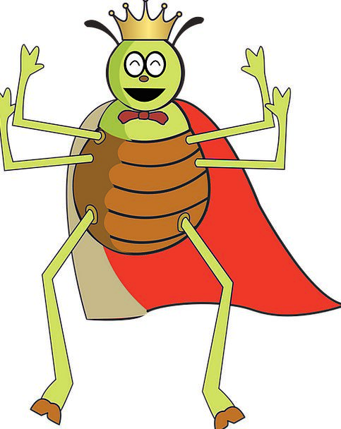 Flea Louse Germ Free Vector Graphics Bug