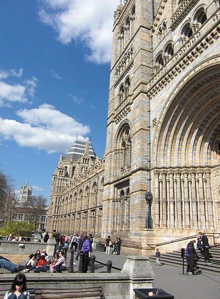 Museum Of Natural History England London United Ki