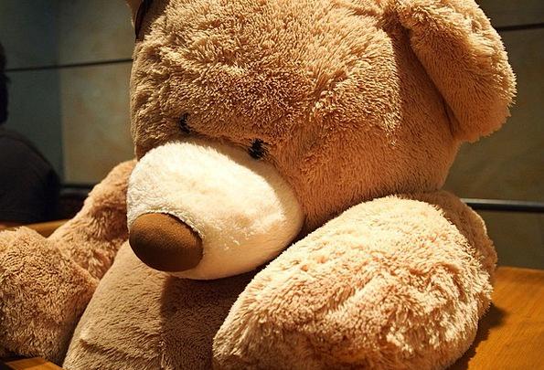 Teddy Bear Teddy Doll Soft Toy Toy Brown Chocolate