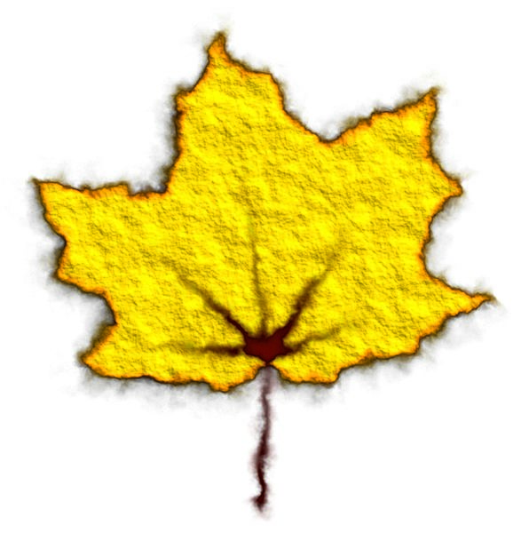 Yellow Leaf Reduction Autumn Fall Leaves Greenerie