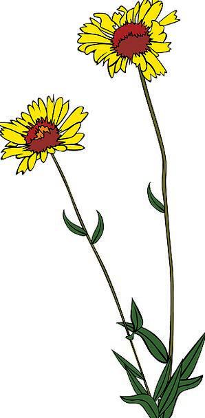 Flowers Creamy Plants Florae Yellow Free Vector Gr