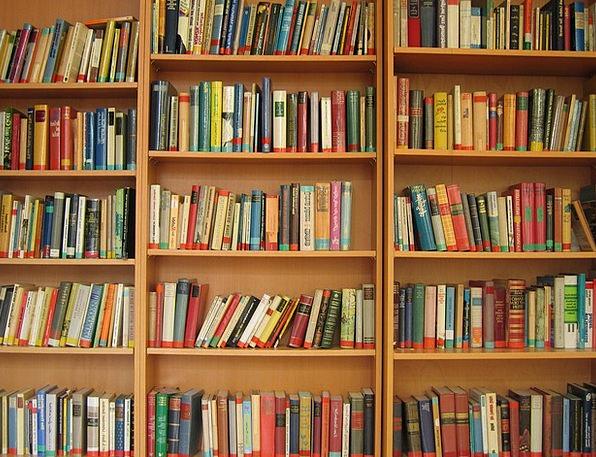Book Volume Records Bookshelf Shelf Books Read Rec