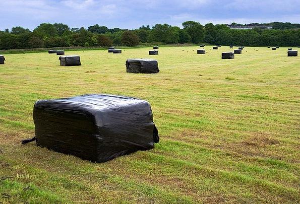 Straw Bundle Field Arena Bale Meadow Grass Plastic