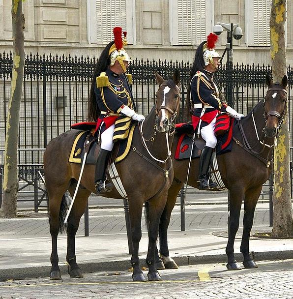 France Buildings Architecture Horses Cattle Paris