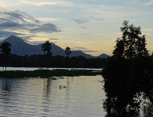 Nature Countryside Landscapes Nature India Kerala