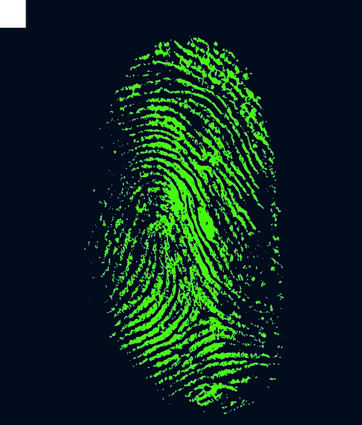 Fingerprint Print Papillary Daktylogramm Security