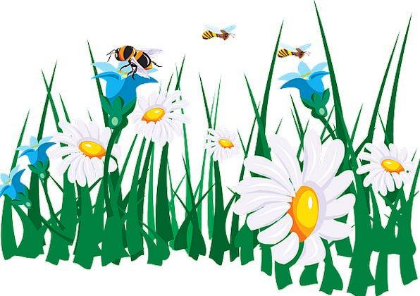 Flowers Plants Craft Industry Garden Plot Bees Spr