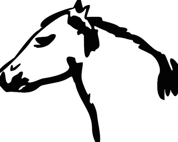 Horse Mount Skull Face Expression Head Free Vector