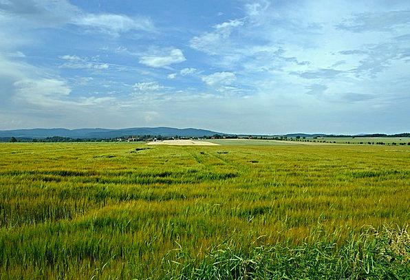 Landscape Scenery Landscapes Field Nature Grass La
