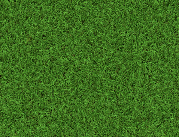 Meadow Field Textures Lawn Backgrounds Blade Of Gr