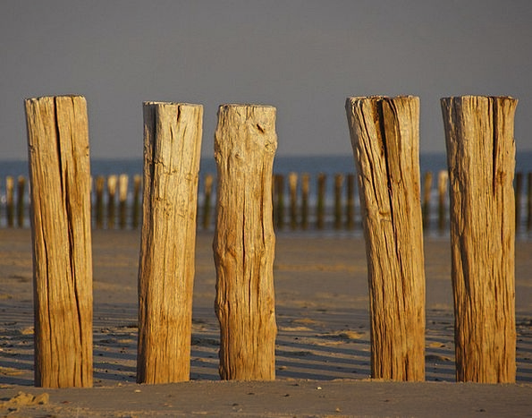 Post Pole Vacation Mole Travel Beach Seashore Brea
