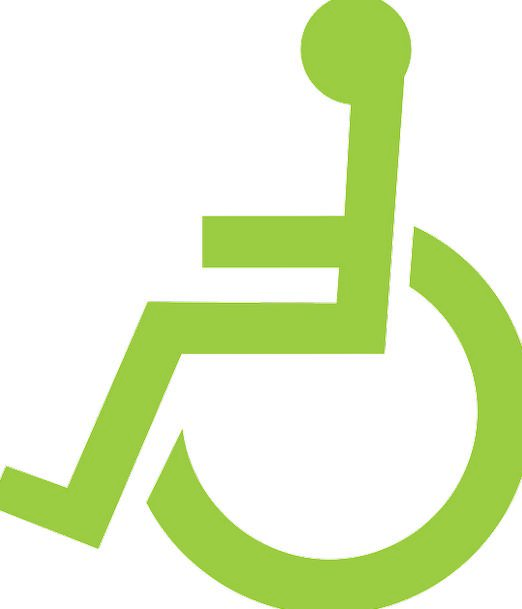 Wheelchair Being Pictogram Person Disabled Incapac