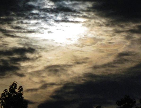 Dark Dim Landscapes Nature Awakening Developing Su