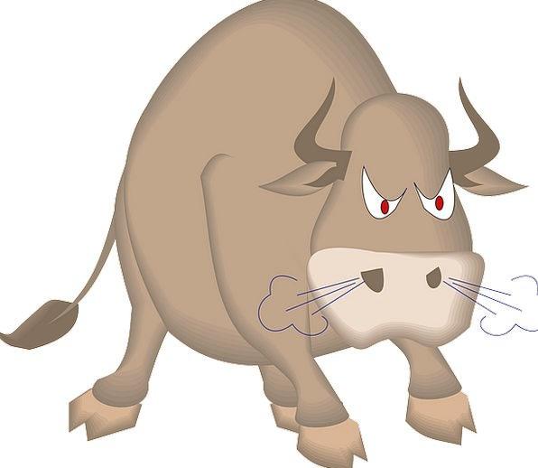 Bull Decree Physical Mammal Creature Animal Meat D