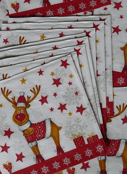 Napkins Bibs Drink Food Moose Reindeer Christmas E