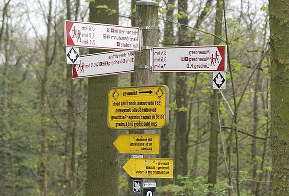 Forest Woodland Landscapes Almanac Nature Hagen Di