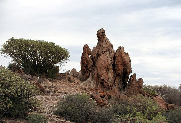 Tenerife Landscapes Scenery Nature Rock Pillar Lan