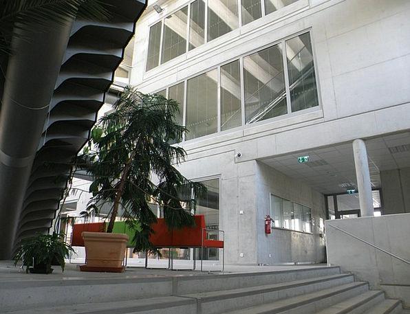 Atrium Hall Buildings Architecture University Coll