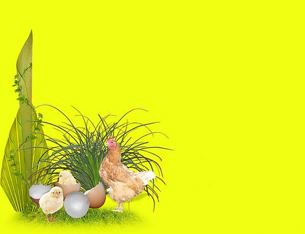 Easter Landscapes Spawns Nature Chickens Cowards E