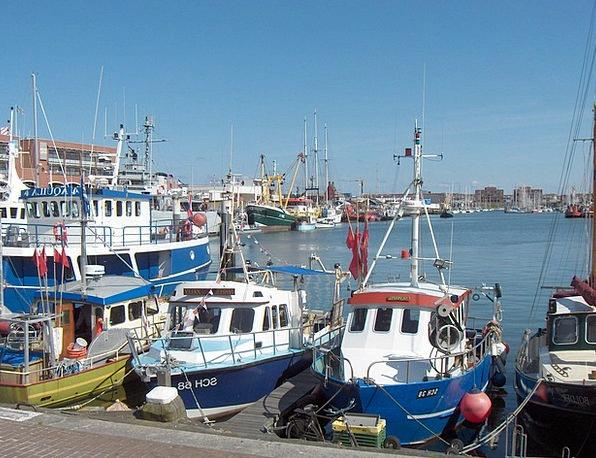 Scheveningen Shore The Hague Coast