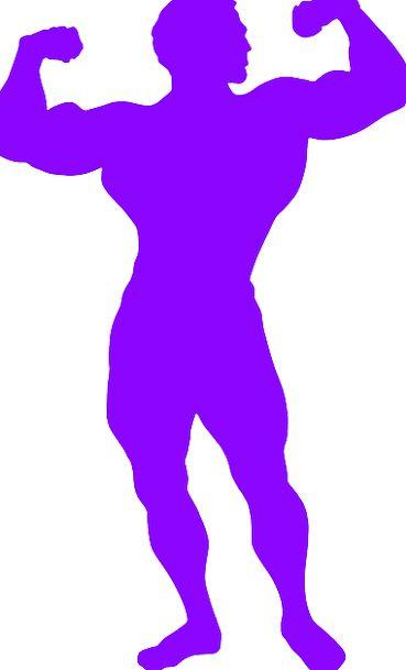 Bodybuilder Weightlifter Strengths Male Masculine