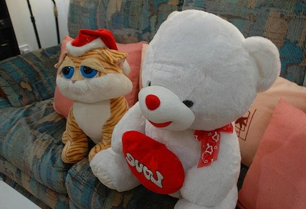 Teddy Bear Teddy Toy Doll Stuffed Toys Bear Tolera