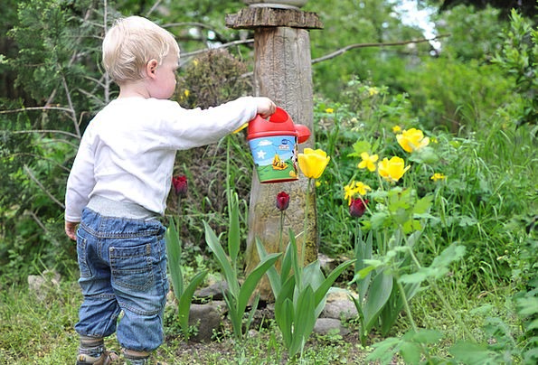 Child Youngster Garden Plot Kid Watering Soaking F