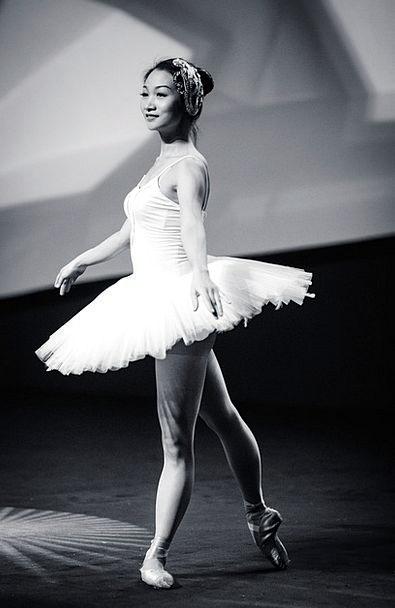 Ballet Ball Dancer Dance Elegance Ballerina Danseu