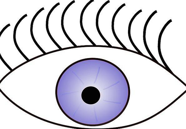 Eye Judgment Open Exposed Eyelashes Blue Eyes Eyel