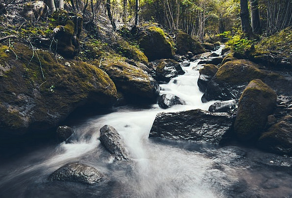 Stream Watercourse Landscapes Graceful Nature Fore