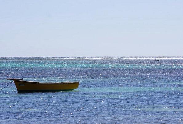 Sea Marine Vacation Ship Travel Ocean Boat Travel