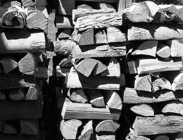 Wood Timber Landscapes Nature Spilt Fell Hardwood