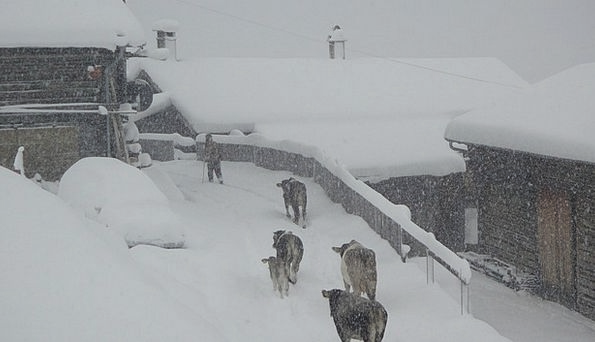 Winter Season Safien Valley Winter Blast Switzerla