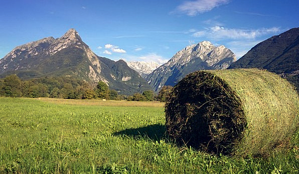 Hay Bale Landscapes Nature Alps Slovenia Alpine Bo