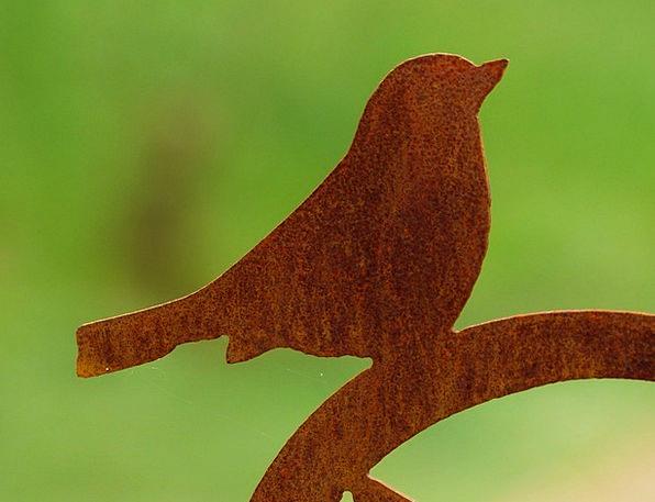 Bird Fowl Physical Metal Metallic Animal Fig Sheet
