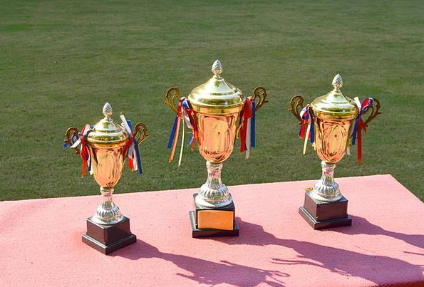 Trophy Cup Cups Win Victory Trophies Sports Winner
