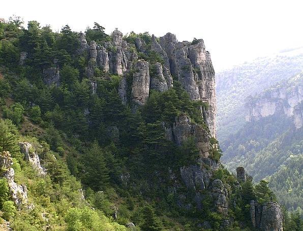 Rock Pillar Valley Jonte Gorge France Canyon