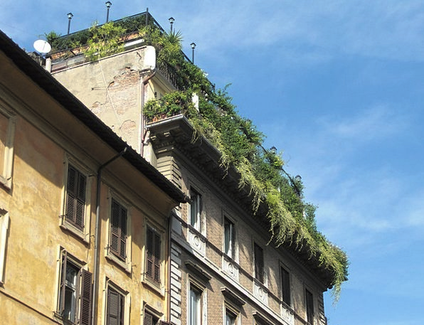 Roof Garden Buildings Architecture Italy Rome Buil
