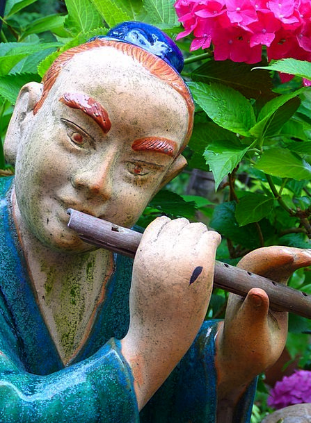 Flautist Musician Performer Asian Fig Flute Groove