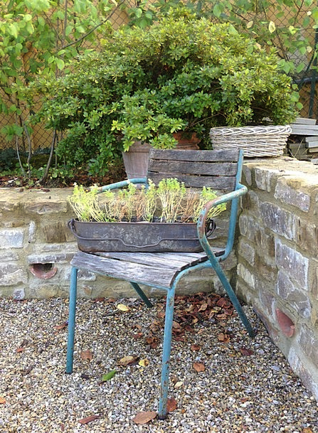 Chair Chairperson Out-of-date Garden Plot Vintage